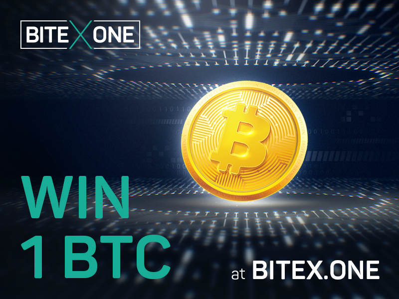 Bitex One