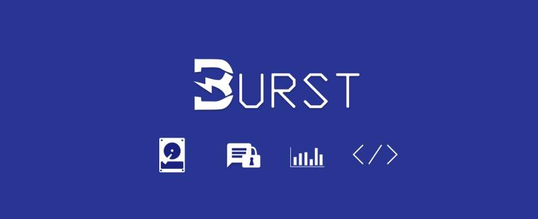 Логотип проекта Burst