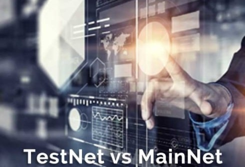 Testnet vs Mainnet